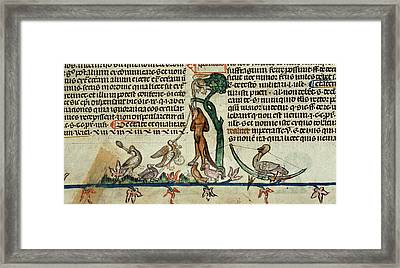 Death Of Reynard The Fox Framed Print