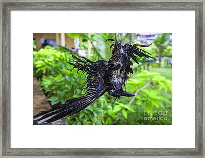 Death Raven Hanging In The Rope Framed Print by Gina Koch