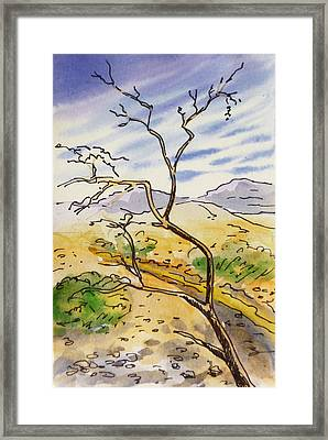 Death Valley- California Sketchbook Project Framed Print by Irina Sztukowski