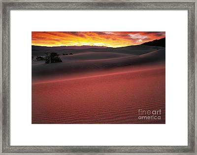 Death Valley Sunrise Framed Print by Inge Johnsson