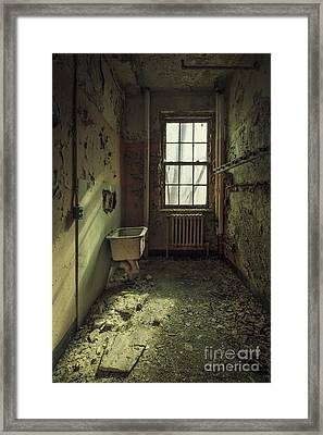 Decade Of Decay Framed Print by Evelina Kremsdorf
