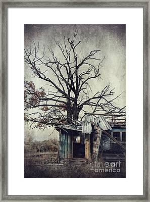 Decay Barn Framed Print by Svetlana Sewell