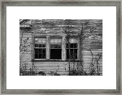 Decay Framed Print by Hazel Billingsley