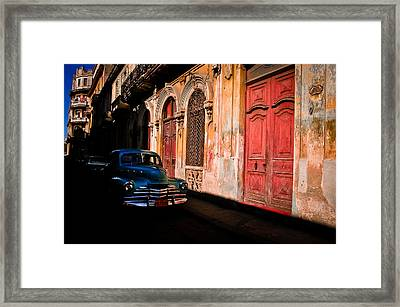 Decaying Beauty  Framed Print by Cecil K Brissette