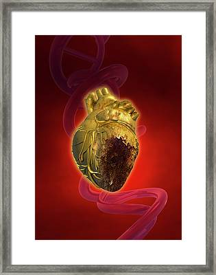 Decaying Heart Framed Print by Victor Habbick Visions