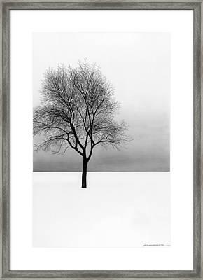 December 11 Framed Print by Doug Fluckiger
