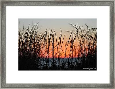 December Dawn Framed Print