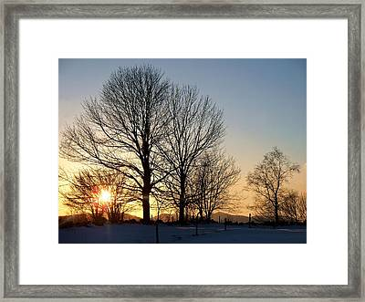 December Sundown Through The Trees Framed Print by Joy Nichols