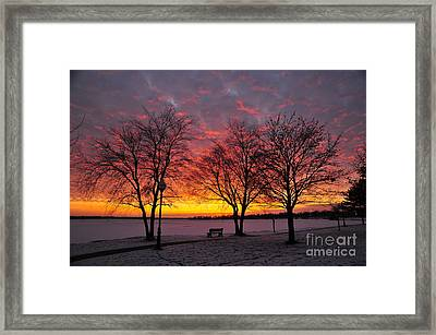 Framed Print featuring the photograph December Sunset by Terri Gostola