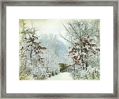 December's Path Framed Print