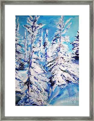 December's Solitude Framed Print