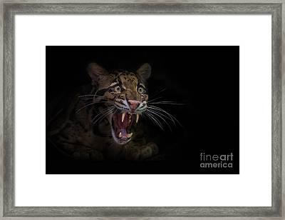Deceptive Expressions Framed Print by Ashley Vincent