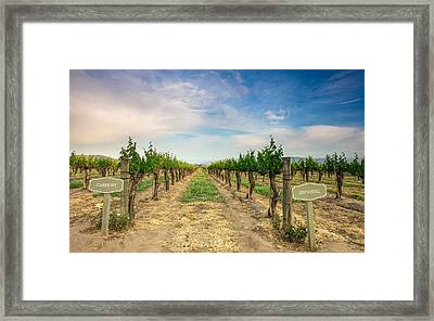Decisions Framed Print by Robert  Aycock