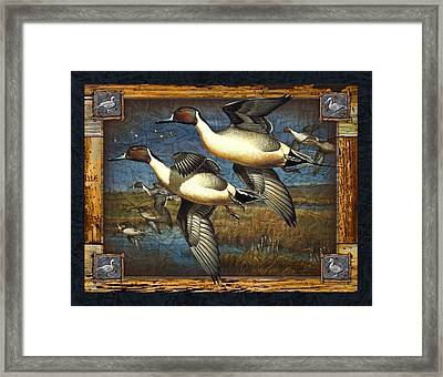 Deco Pintail Ducks Framed Print by JQ Licensing