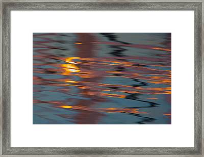 Deconstructed Tiger  73a8494 Framed Print by David Orias