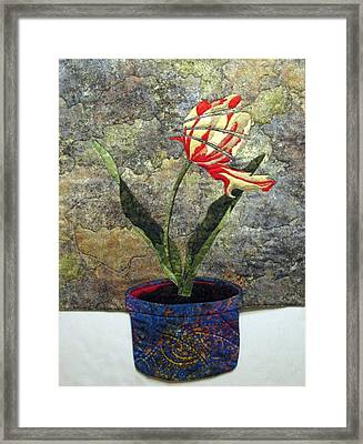 Deconstructed Tulip Framed Print by Lynda K Boardman