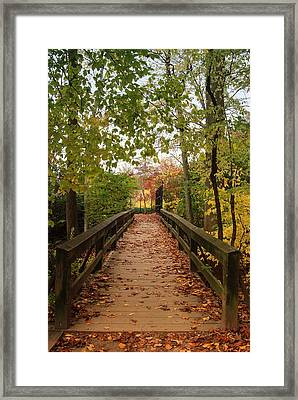 Decorate With Leaves - Holmdel Park Framed Print