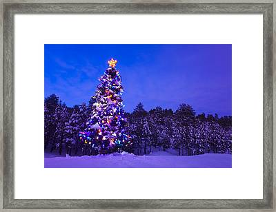 Decorated & Lit Christmas Tree In A Framed Print by Michael DeYoung