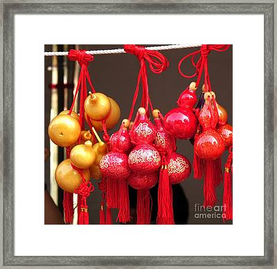 Decorated Dried Gourds Framed Print by Yali Shi