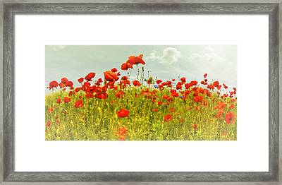 Decorative-art Field Of Red Poppies Framed Print by Melanie Viola