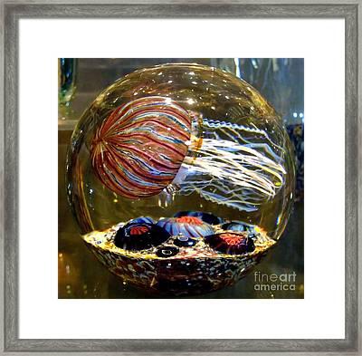 Decorative Jellyfish Framed Print by Jim Fitzpatrick