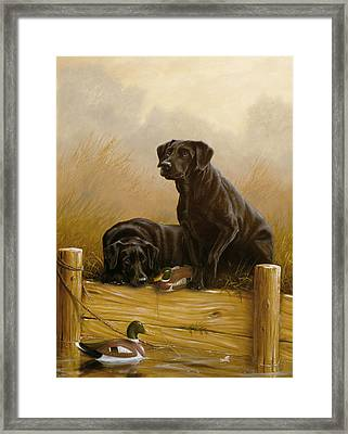 Decoy Dawn Framed Print