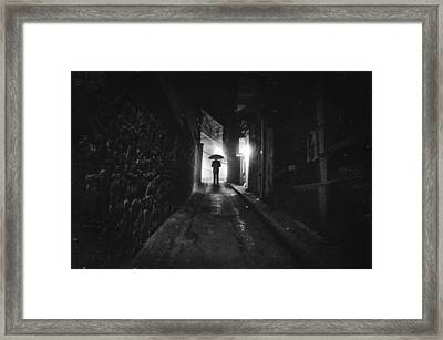 Decoy Framed Print by Taylan Apukovska