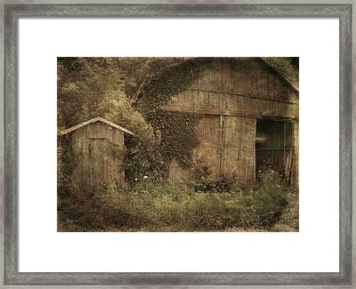 Decrepitude Framed Print by Cynthia Lassiter