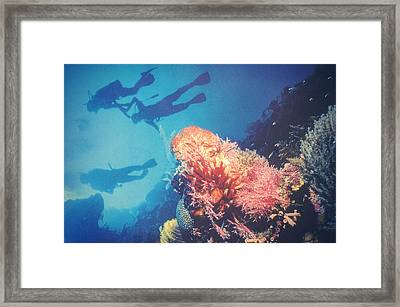 Deep Blue Framed Print by Taylan Apukovska