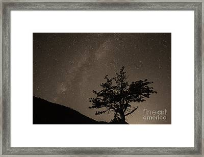 Deep Deep Deep Into The Night  Framed Print by James BO  Insogna