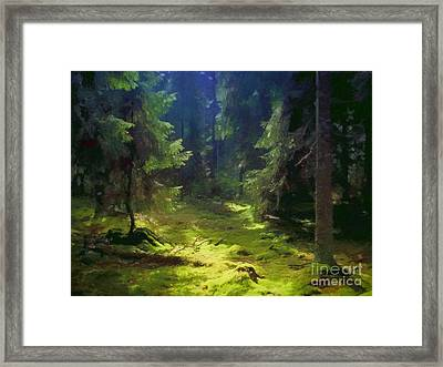 Deep Forest Framed Print by Lutz Baar