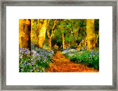 Deep In A Forest Framed Print by Georgiana Romanovna