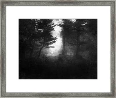 Deep In The Dark Woods Framed Print