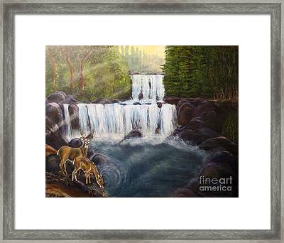 A Tall Drink Of Water For A Pair Of White Tailed Deer In The Great Smoky Mountains Framed Print
