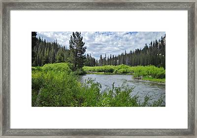 Deep In The Sierras Framed Print by Marilyn Diaz