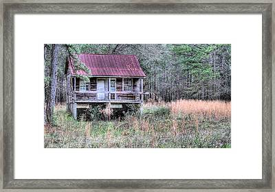 Deep In The Woods Framed Print by JC Findley