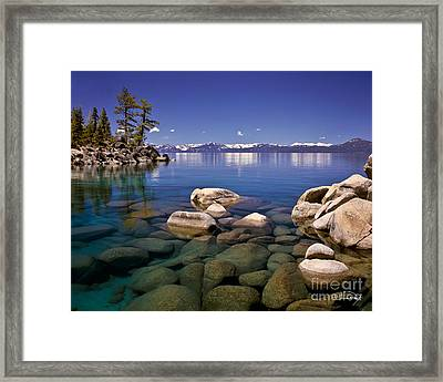 Deep Looks Framed Print by Vance Fox