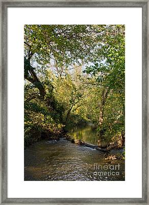 Deep Run Maryland Framed Print by Chris Scroggins