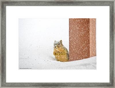 Deep Snow Framed Print