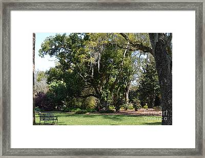 Framed Print featuring the photograph Deep South Scenery by Carol  Bradley