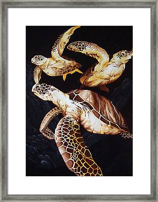 Deep Swim Framed Print