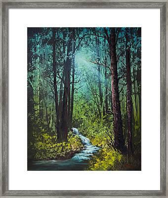 Deep Woods Stream Framed Print by C Steele