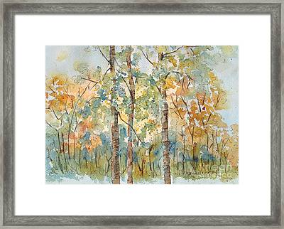 Deep Woods Waskesiu Framed Print
