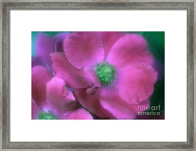 Framed Print featuring the photograph Deepest Sympathy by Mary Lou Chmura