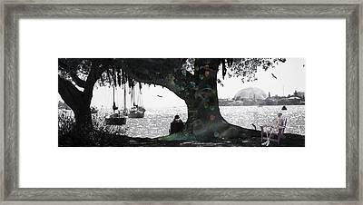 Deeply Rooted Framed Print by Betsy Knapp