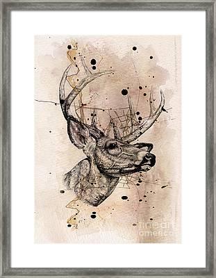Deer 4 Framed Print