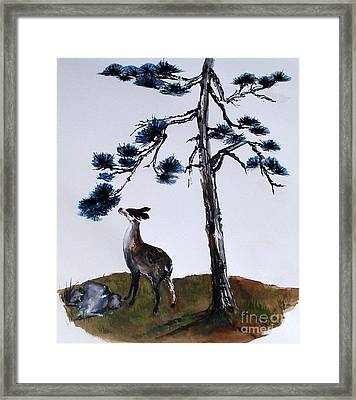 Deer And Pine Framed Print