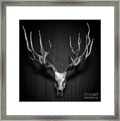Deer Antler Hang On Wood Panel Framed Print by Nuttakit Sukjaroensuk