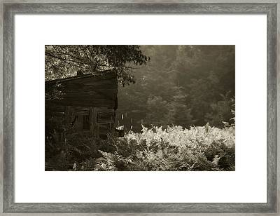Deer Blind Framed Print