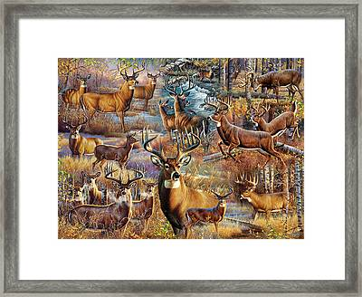 Deer Collage Framed Print by Cynthie Fisher